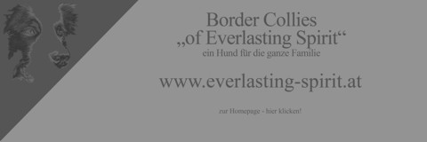 http://www.everlasting-spirit.at/